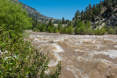 The west Walker River at near capacity.  From hwy 395, north of hwy 108.  California.
