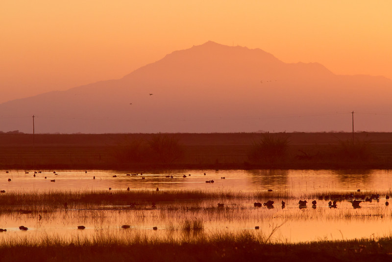 Mt Diablo Sunset