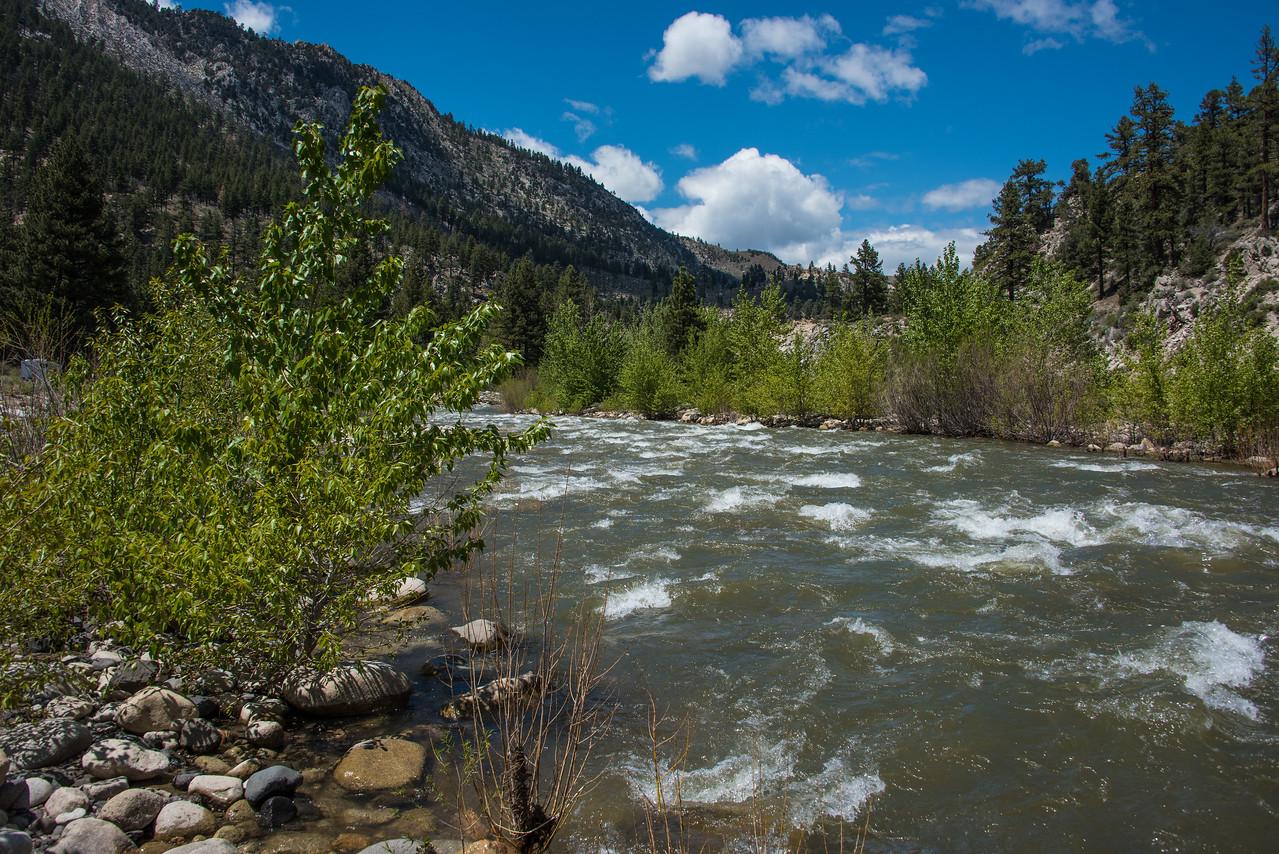 West walker river.  California.