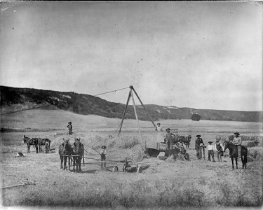 Baling hay with a  horse power hay press in about 1909.  This outfit was probably owned by the Cole family since florence and Hattie Cole are photographed with workcrew.  1/4 mile southwest of Rancho Santa Fe road and Olivenhain road.