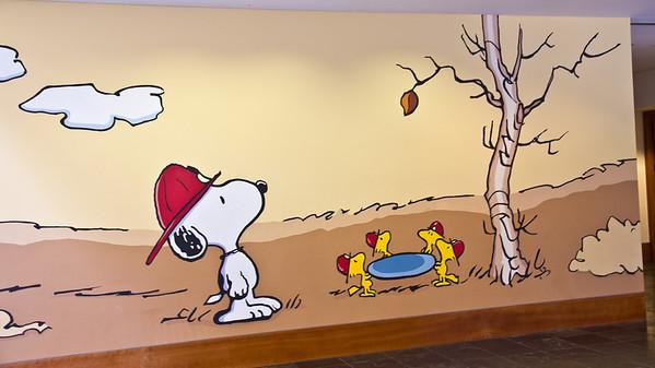 Peanuts Museum