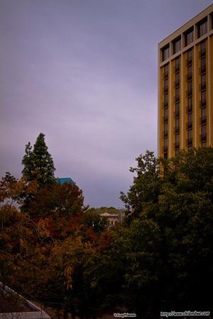 Sacramento rainy day downtown