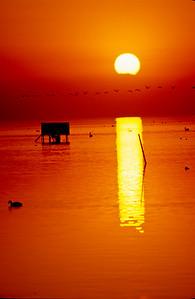 Sunset at Red Hill.  Salton Sea, California