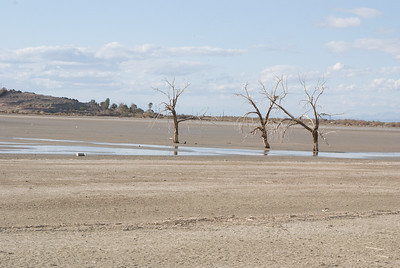 Receding water continues to expose additional land.  Garst road, Salton Sea.