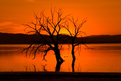 Sunset from Garst road, red hill.  The Salton Sea was one of my favorite photographiic locations for both birds and scenics.  Receding water beginning in the late 1990's  has changed much of the landscape.  By 2016, most of the water in this photo is gone.