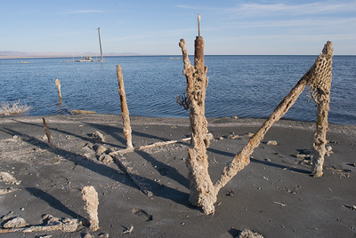 Waterfront runions which may have been a boat dock.  Bombay Beach, Salton Sea.