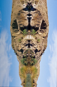 Photo of mirrored shore turned vertical. Lower Colorado river, Imperical WLR, California.
