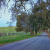 Willow Creek Road