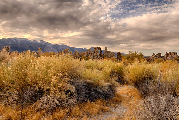 Path Through the Tufa at Mono Lake