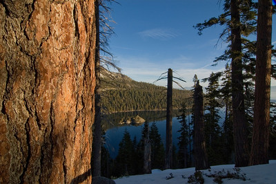 Emerald Bay through the trees