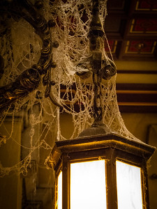 Lots of cobwebs