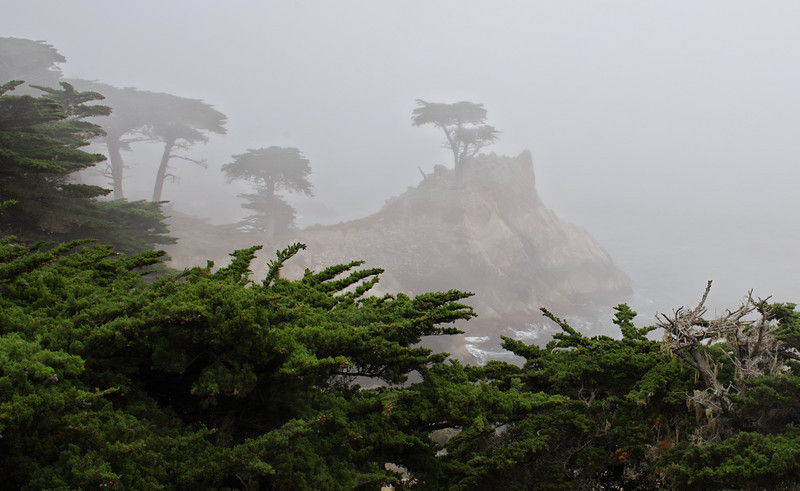 Foggy Terrain
