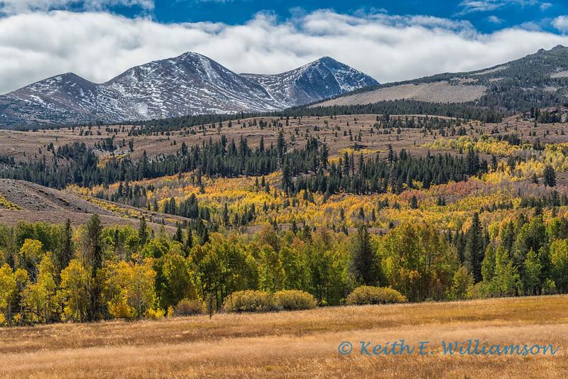 Fall, eastern Sierra's