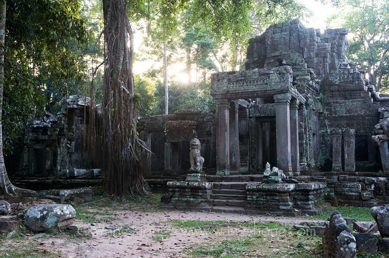 Preah Khan, east entrance.  I felt like in a dream.