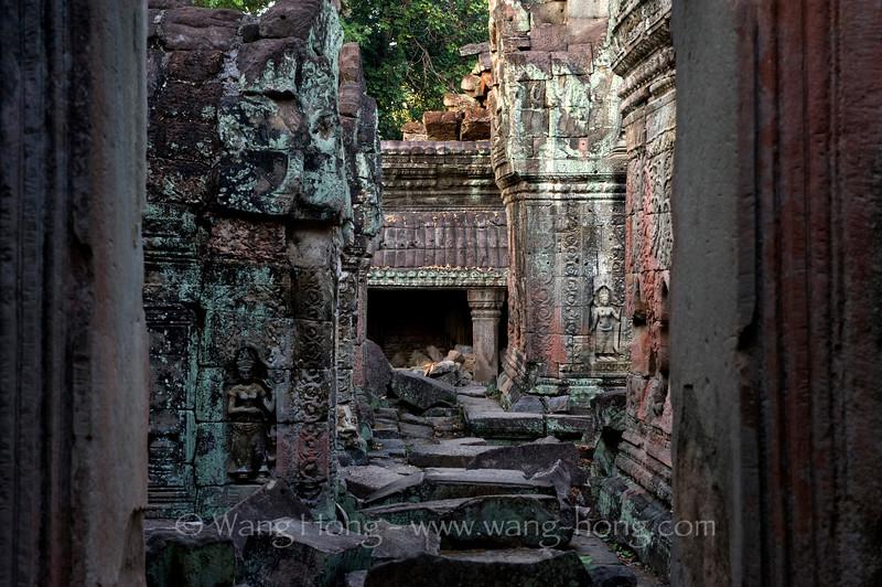 Preah Khan, unbelievably beautiful ruins