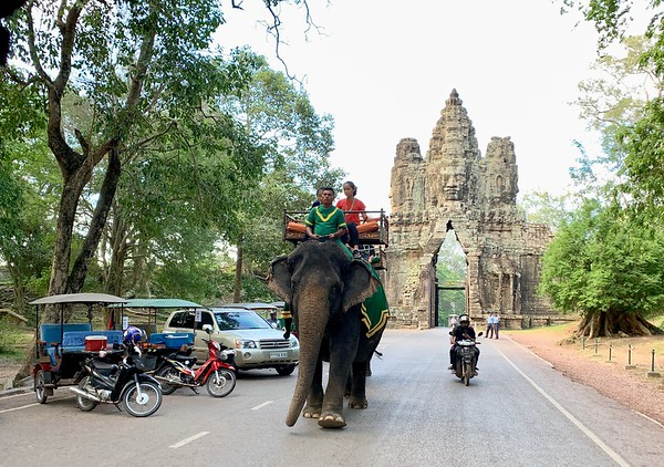All the modes of transport available at Angkor Thom