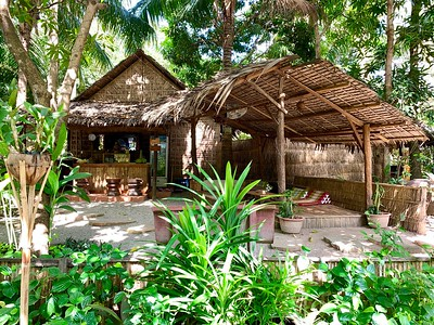 Jungle Juice Bar with amazing smoothies, cakes and fresh coconut ice cream!