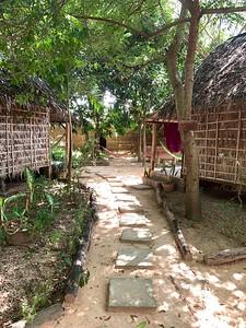 The path to my hut