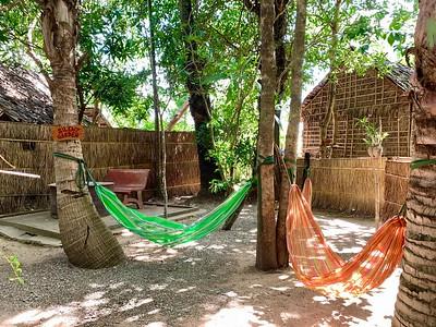 Hariharalaya - lie back and look at the trees above