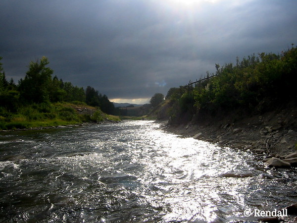 Storm brewing along the Crowsnest River, Alberta