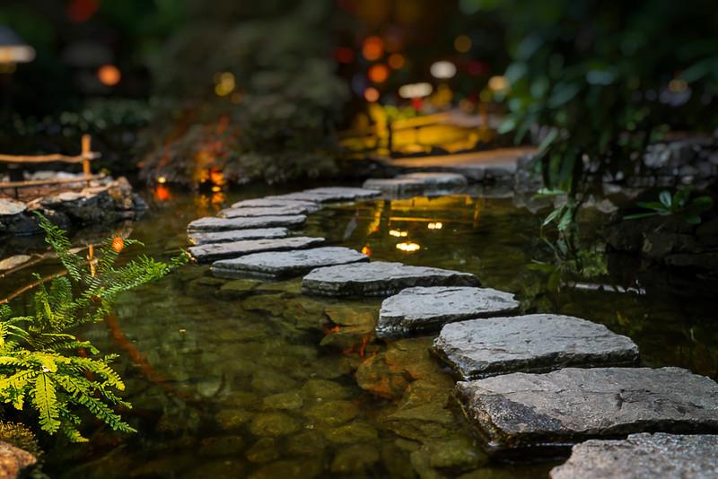 Japanese Garden by night