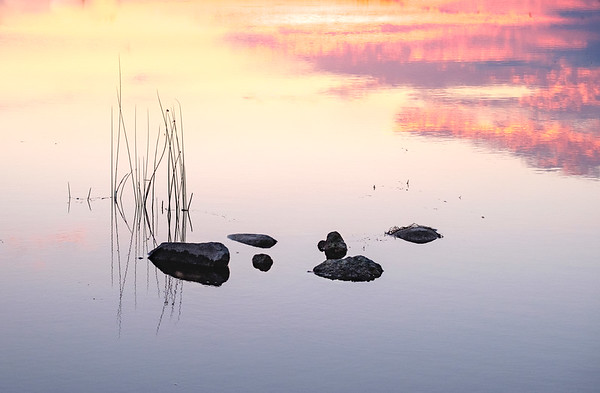 Sunrise on a still pond with rocks