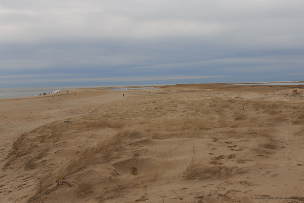 There are a few hearty souls on Chatham Beach in Chatham, MA, even in the winter. - December 2012