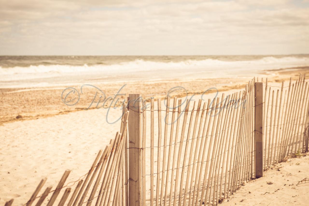 Sandy Neck Beach-139