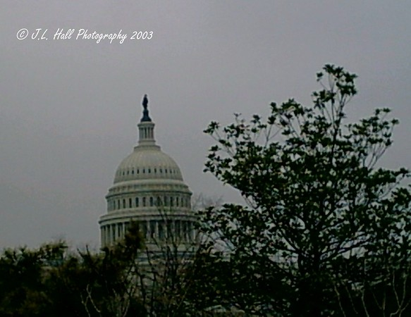 US Capitol - Washington DC