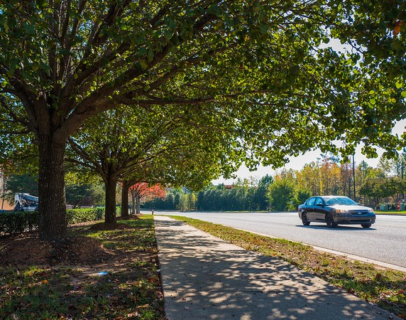 Autumn in Cary