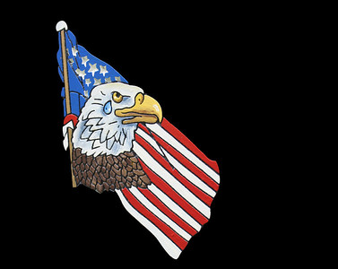 Eagle with Ameriacan Flag carved in stone