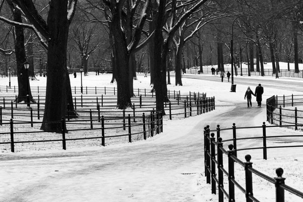 Central Park blues (Central Park, NYC)