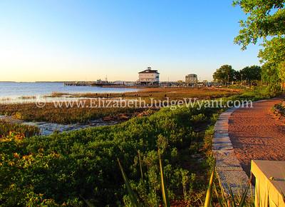 Waterfront Park Sunrise, Charleston, SC