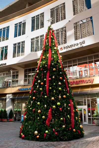 Epicentre Christmas Tree
