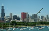 chicago_skyline4718