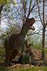 dinosaur IMG_6509