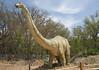 dinosaur IMG_6522