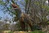 dinosaur IMG_6510