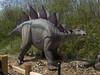 dinosaur IMG_6517
