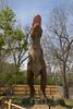 dinosaur IMG_6538