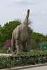 dinosaur IMG_6549
