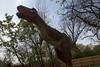 dinosaur IMG_6543