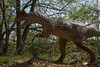 dinosaur IMG_6506