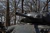tank IMG_4457