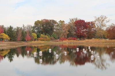 Morton Arboretum Fall 2014