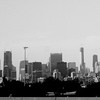Chicago Skyline BW