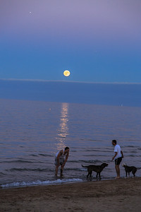 Playing with the dogs while the moon rises