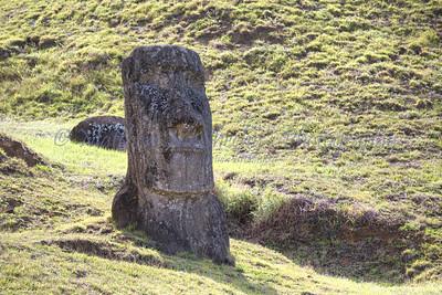 Moai-12