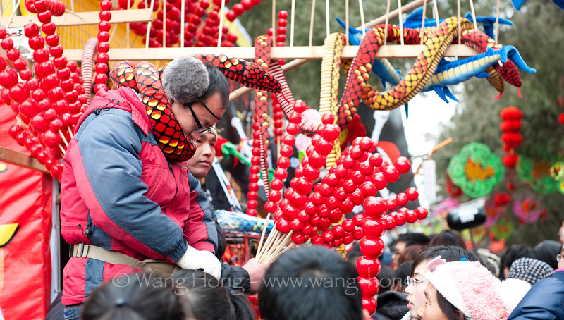 Temple Fair at the Chinese New Year turns Temple of Earth from a quiet corner to escape the city's bustle and hustle into a sea of people. 地坛庙会人山人海。