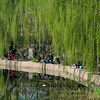 Fishing along the Liangma canal in early spring 早春的亮马河畔垂钓